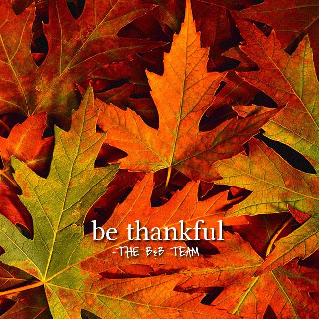 thanksgiving-112515