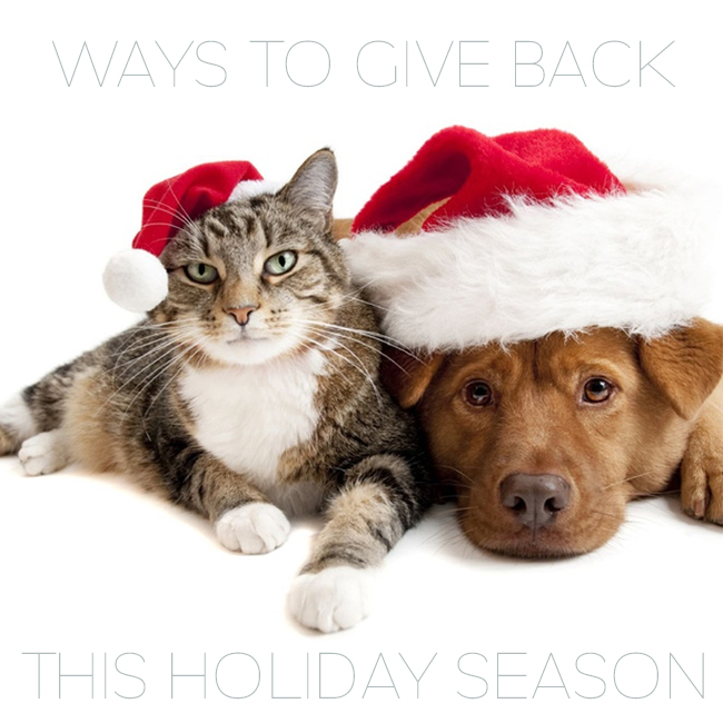 Special Ways To Give Back This Holiday Season