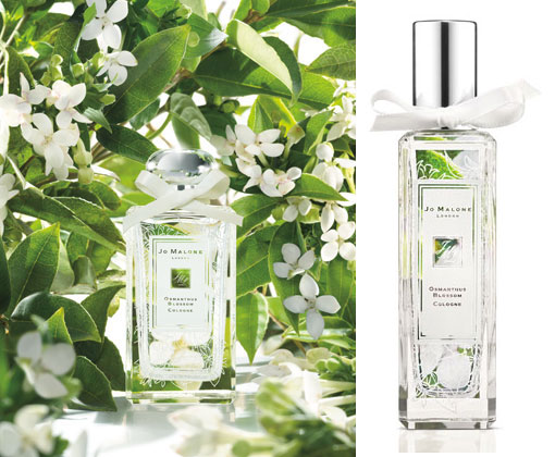 Yummy:Jo Malone Limited Edition Fragrance Collection