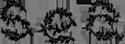 seany-logo