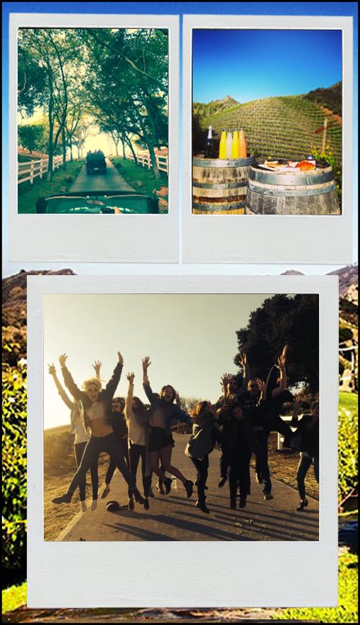 LA-Safaris4