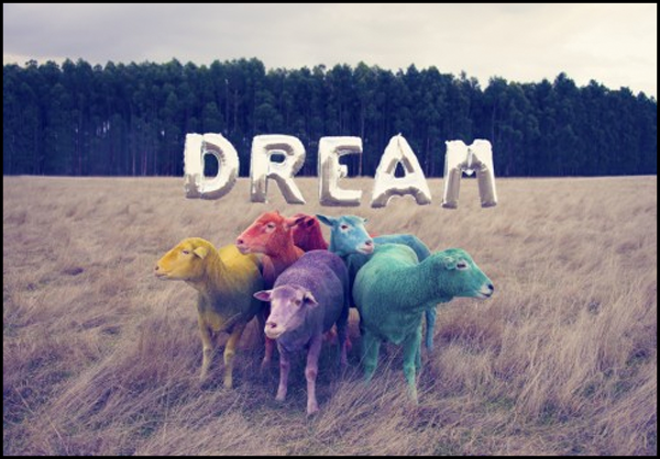 DreamSeries-header
